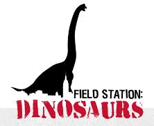 field station logo